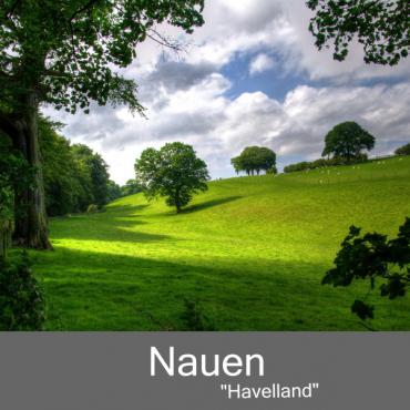 Nauen